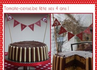 Mon gros gâteau vanille & chocolat