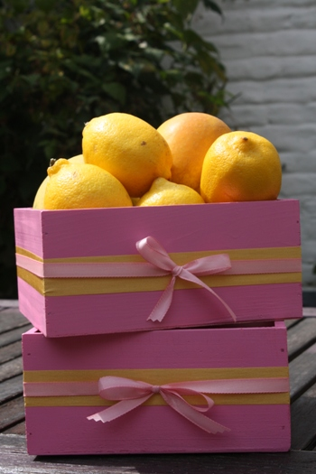 Décoration Anniversaire - Rose et Citron