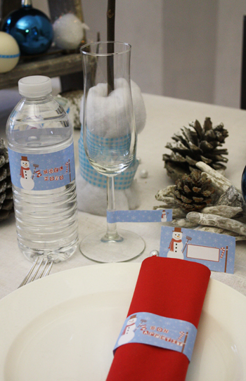 Décoration de table - Noël Glacial