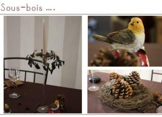 Décoration de table | Dans l'esprit sous-bois, automnal