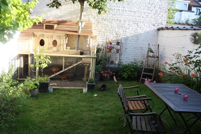 Osez les poules en ville dans un jardin bruxellois for Piscine de jardin belgique