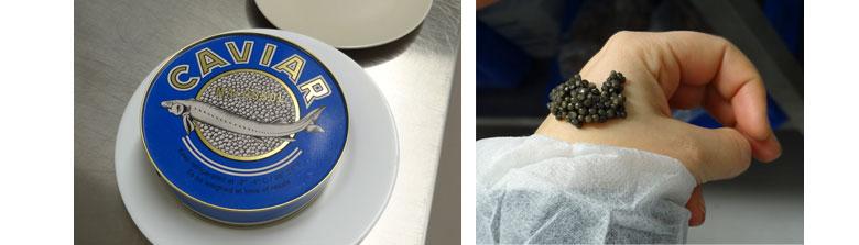 Caspaian caviar