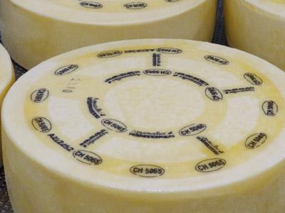 PROCESSUS DE FABRICATION: du lait au fromage, en passant par le savoir-faire du fromager