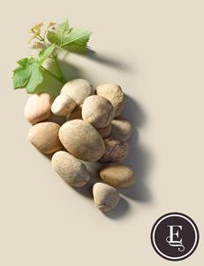 Les vignobles Baron d'Escalin: l'histoire d'un vin mais également l'histoire d'un domaine…