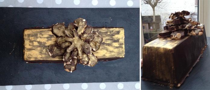 buche-de-noel-coque-chocolat1