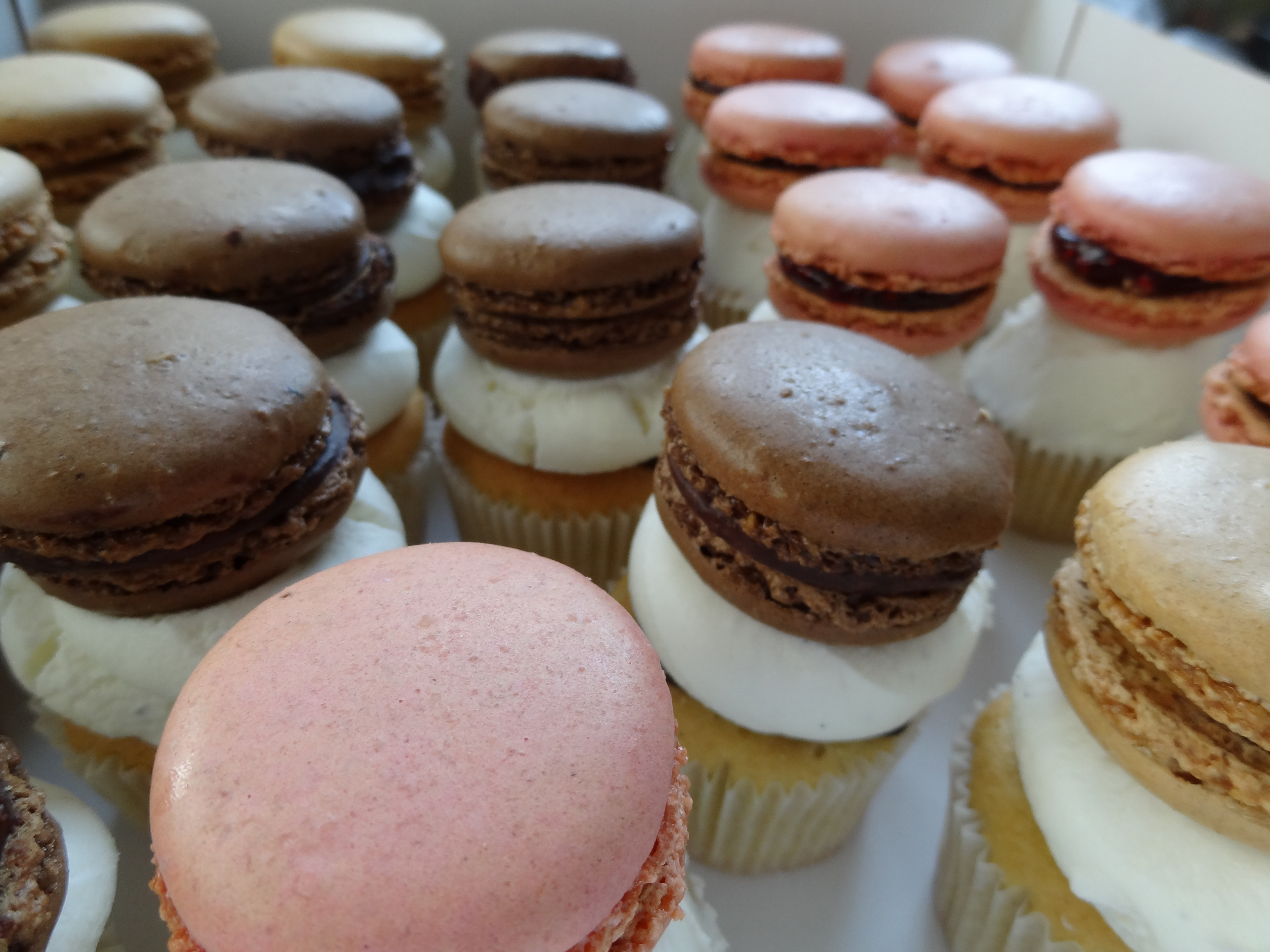 cupcake-macaron