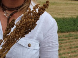 Le quinoa : petits grains d'énergie, super aliments