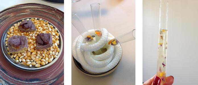 TomateCerise-Le-petit-marseillais-dessert2