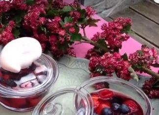 Soupe aux fruits rouges