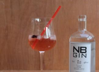 Gin Tonic hibiscus