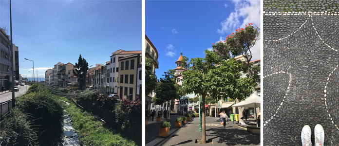 Madère - Funchal