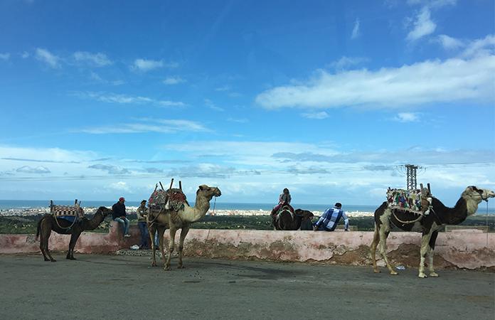 Route Essaouira