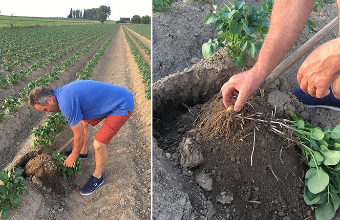 Rencontres agriculteurs belgique
