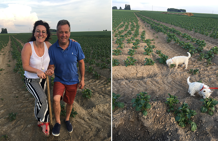 McCain la frite produite en Belgique ? Rencontre avec l'un des agriculteurs, Bernard Dutrieux