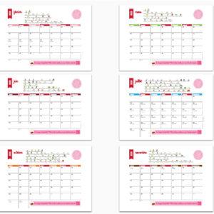 Mois par mois un calendrier agenda + un zoom sur les fruits et légumes à consommer en Belgique