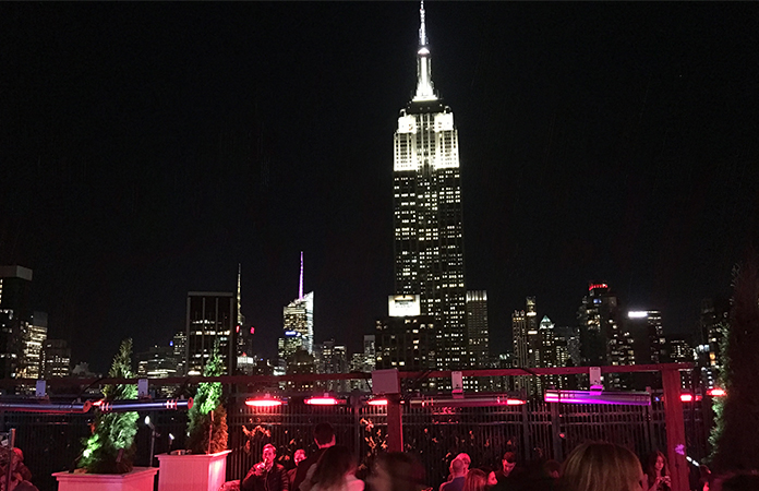 New York Rooftop 230