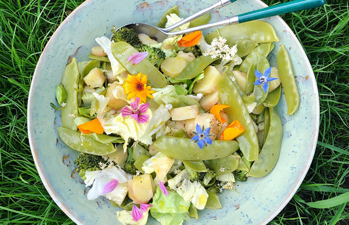 salade Brocoli / Mange-tout / Iceberg