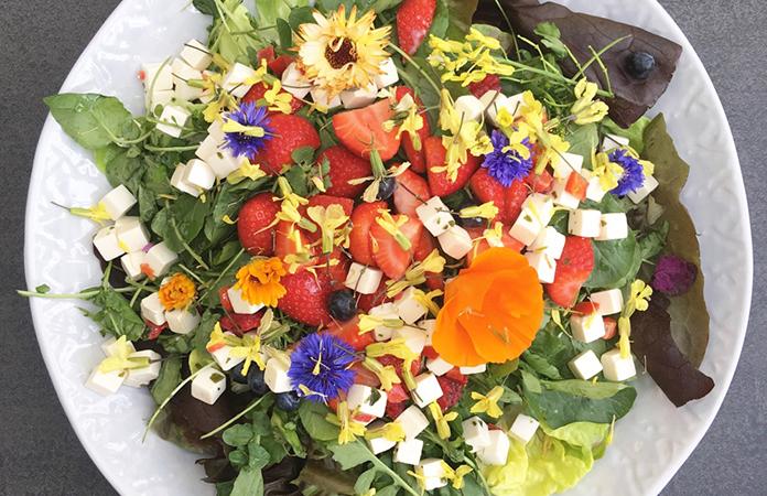 Laitue / fraises / Feta salade