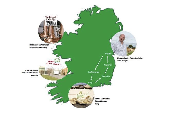 Voyage gourmand au cœur de l'Irlande avec Bord Bia | Tomate-Cerise